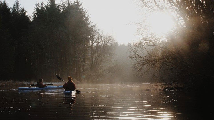 Sligo Kayak Tours - Lough Gill