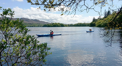 Sligo Kayak Tours - Woodland Wilderness Camping